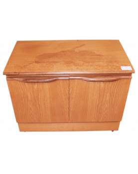Small Cabinet with 2 Doors